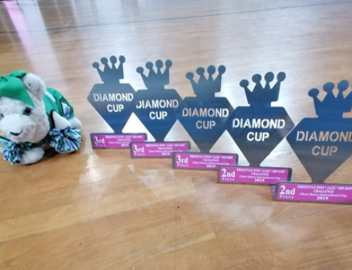 Diamond Cup 2019 – Διακρίσεις